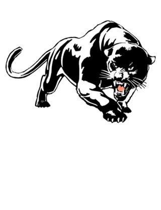Camiseta Black Panther do Studio Josecarlospirralho por R$55,00