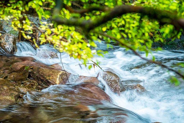 5 prostych zasad jak oszczędzać wodę