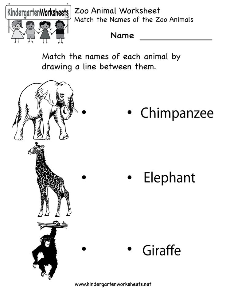 kindergarten zoo animal worksheet printable worksheets legacy pinterest search zoos and. Black Bedroom Furniture Sets. Home Design Ideas