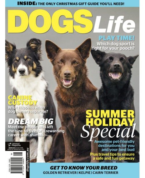 Our summer Christmas special is on sale now! Don't forget to grab your copy from your local newsagent or online at http://www.universalshop.com.au/index.php?route=product/product&product_id=151. #DogsLifeMag @DogsLifeMag