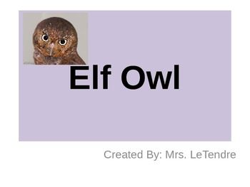 Your students will enjoy colorful photos and fun facts about the Elf Owl as they learn about owls and/or desert life.