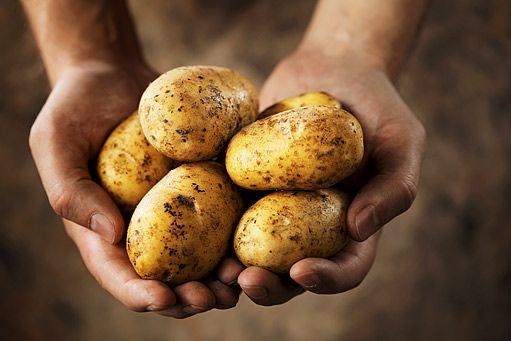 """Věděli jste, že šťáva z brambor je účinnější, než jakýkoliv """"osvědčený"""" lék na…"""