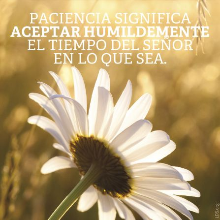 Paciencia significa aceptar humildamente el tiempo del Señor en lo que sea.