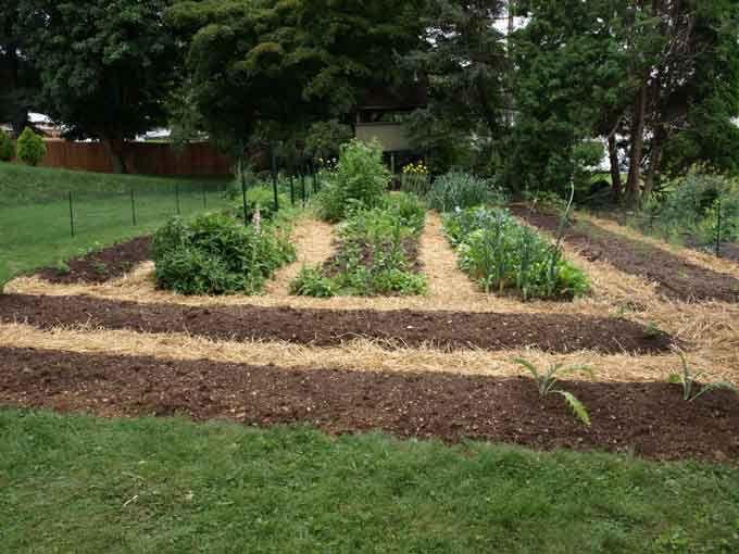 Raised Bed Gardens Raised Bed Garden X Garden Log Its A