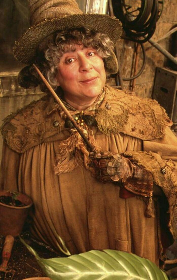 Miriam Margoyles Professor Sprout Harry Potter Professoren Harry Potter World Harry Potter Film