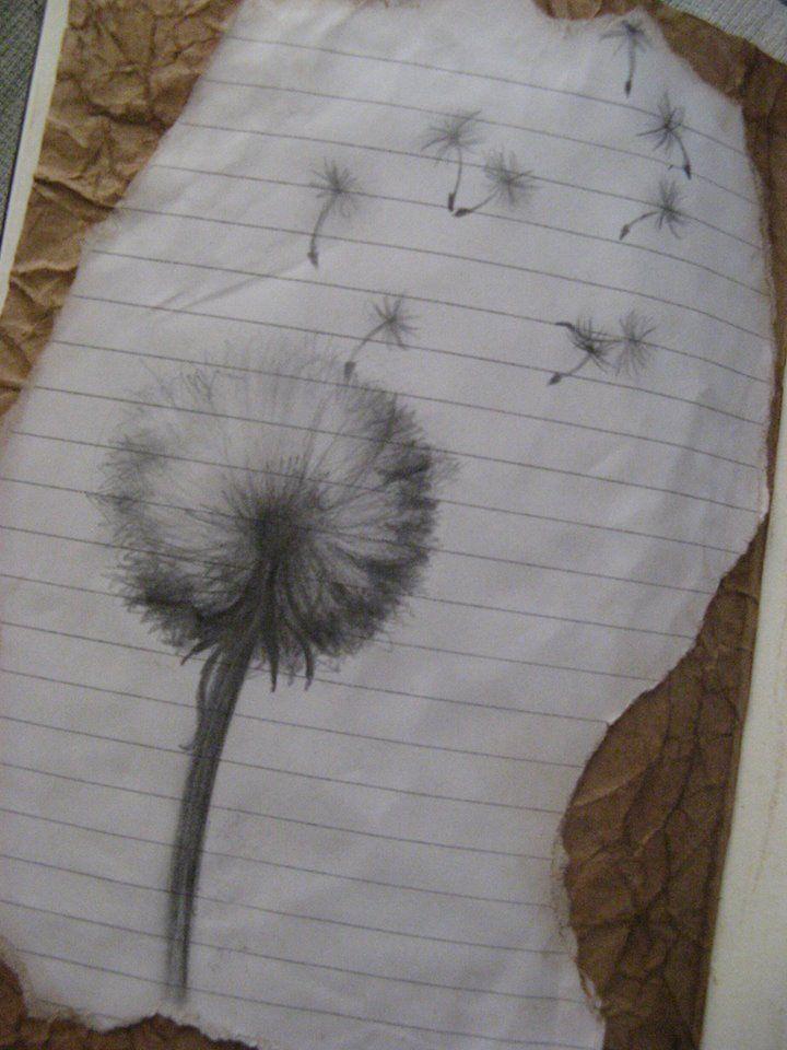 Sketchbook - Dandelion Clock