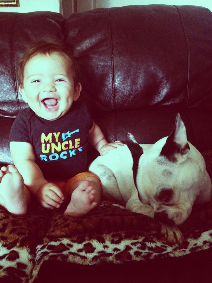A boston and a baby<3