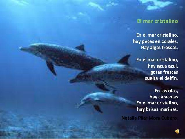 poemas de animales - Buscar con Google