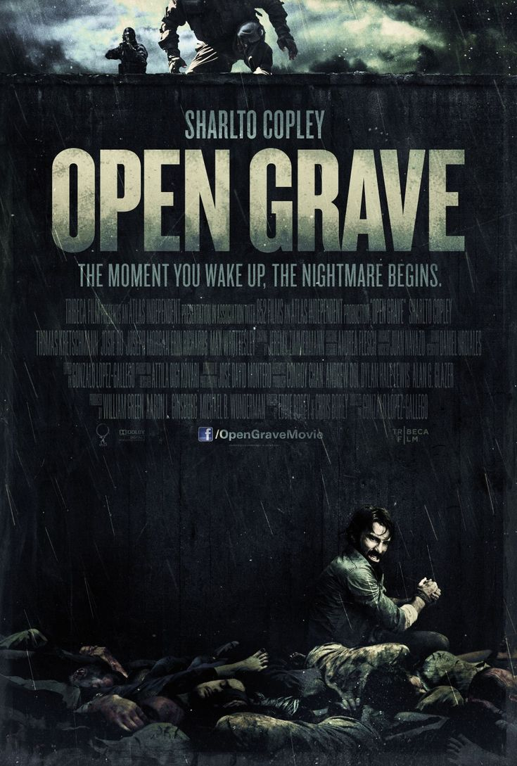 A man wakes up in the wilderness, in a pit full of dead bodies, with no  memory and must determine if the murderer is one of ...