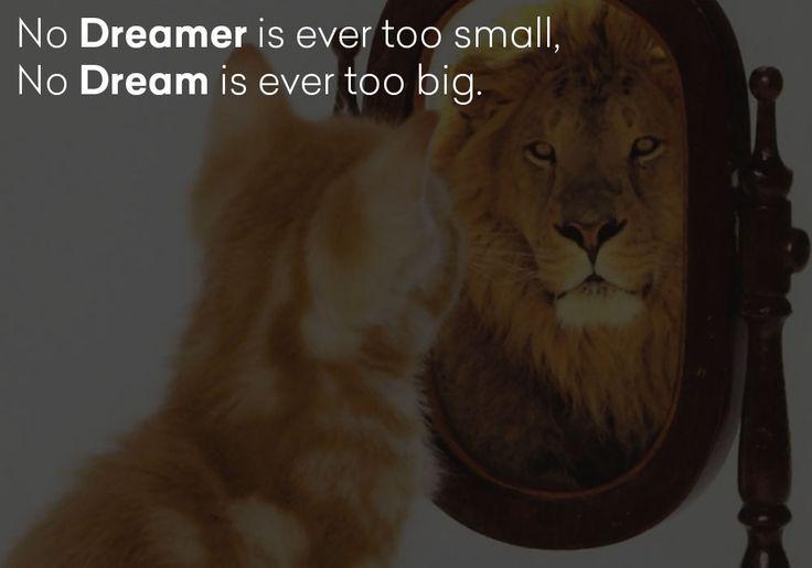 No dreamer is ever too small, no dream is ever too big.  #lion #cat #dreamer