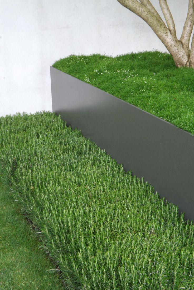 1ca3fdc713dc274c7d7b79fa10cbe23a--irish-moss-garden-features.jpg