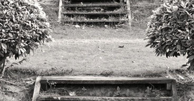Cómo construir escalones en la tierra en una colina. Construye escalones en un jardín con terraza o en una colina hacia otro edificio de tu propiedad. Consigue una apariencia de paisajismo profesional sin vaciar tu cartera. Utiliza materiales reciclados, como durmientes de ferrocarril o piedras naturales, para construirlos. Éste es el mismo proceso utilizado para la construcción de un jardín con ...