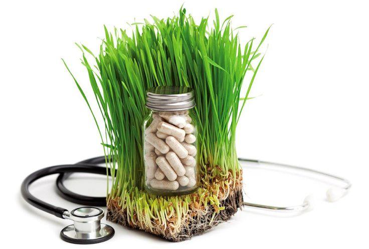 Η Ελβετία Αναγνωρίζει και Νομιμοποιεί 5 Εναλλακτικές Θεραπείες …