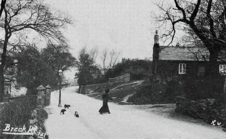 This is Breck Road about 1909, in the right is the old Grammer School at the bottom of the Breck. It is still there. If you carry on this road you will come to St. Hilary Brow and down the hill into Wallasey Village.