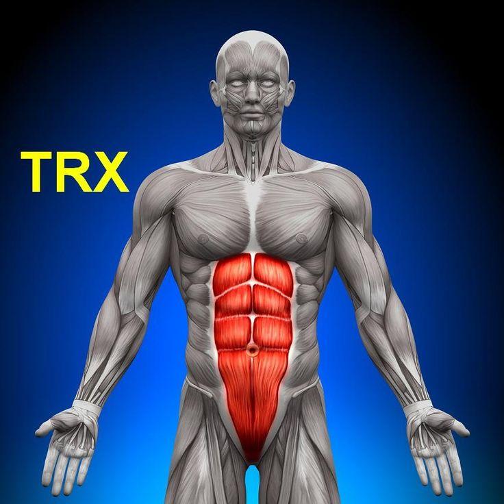 TRX cviky na břišní svaly (exercises abdominal muscles sixpack ABS) bruš...