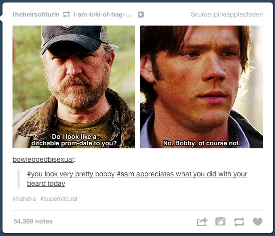 Bobby Singer. Shine on you crazy diamond. <---- Maybe it's because it's late, or maybe because I'm tired, but I laughed for a ridiculous amount of time at both the pin and the comment.