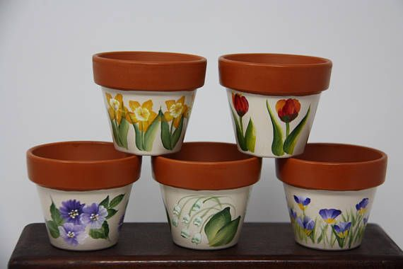 Mini Hand Painted Flower Pots Succulent Pot Flower Pot Party Etsy Painted Flower Pots Flower Pots Succulent Pots