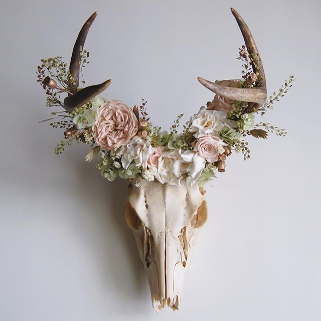 "Deer Skull with Preserved Floral Crown - available in shop (link in profile)  Mingled within the antlers is a preserved floral crown made from Pepper Grass, Achillea of Pearl, Mini Pods, Sea Oats, Reindeer Moss, Kent Beauty Oregano, Garden Rose, Mini Roses, and Gardenias. The palette is Blush, Cream, Pale Green, Beige and Gold.  Measurements: 10"" x 14"" x 11.5"""
