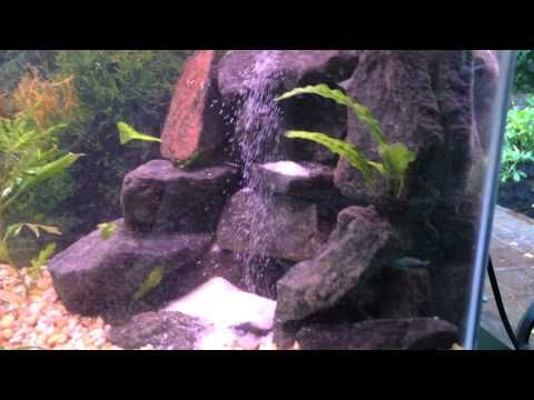 1000 ideas about cheap fish tanks on pinterest for Aquarium waterfall decoration