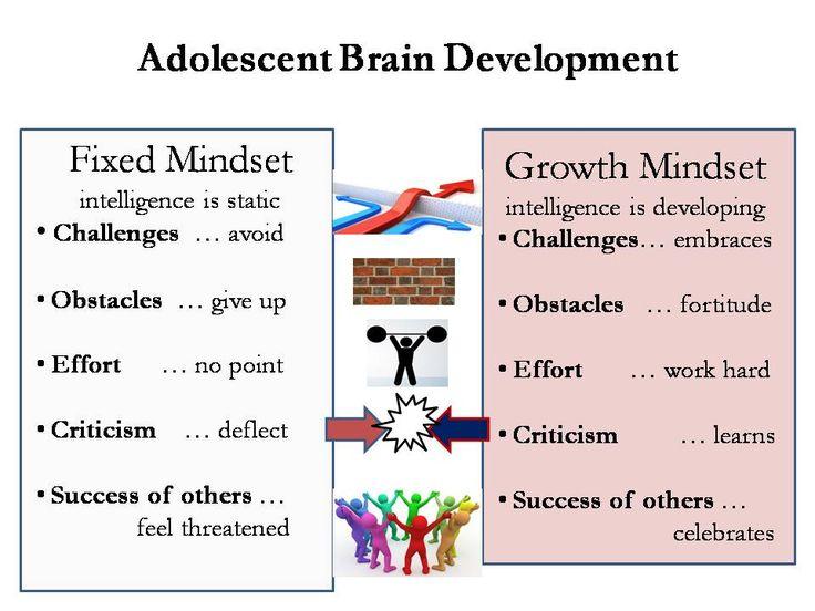 adolescent development essay