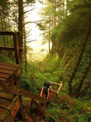 West Coast Trail, Vancouver Island, British Columbia, Canada.
