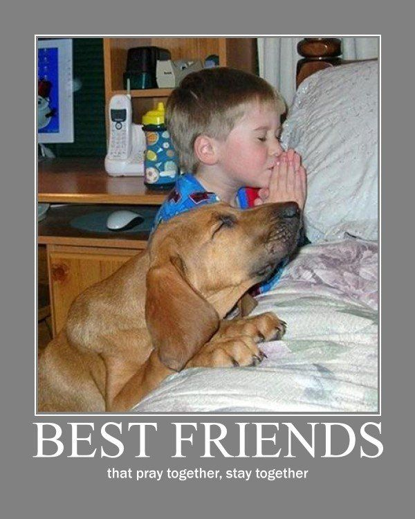 Doggy and little boy praying--best friends