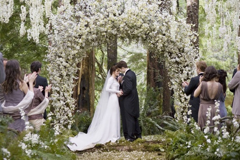 I wish I could be there! #BreakingDawn #Twilight #Wedding
