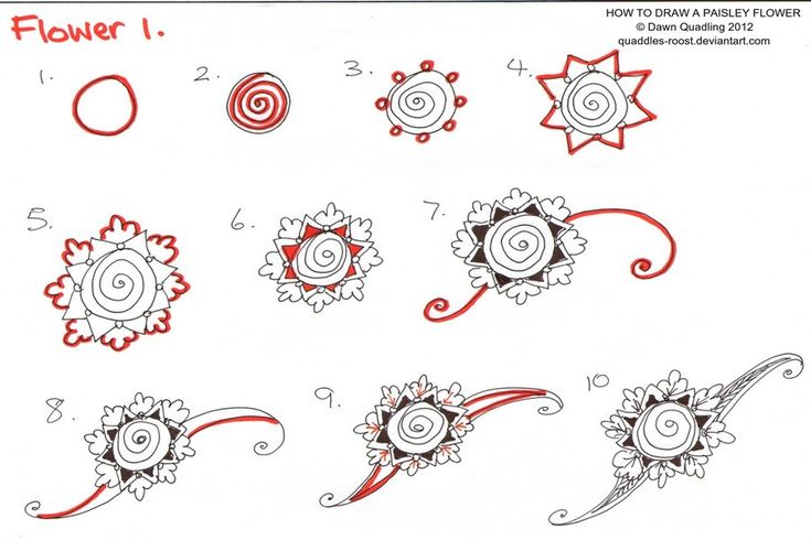 How To Draw Paisley Flower 01 By *Quaddles-Roost On