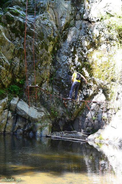 Zona de drumeție (Hiking Zone): Stane, las-o mai ușor ! ( drumeție din iulie 2015) Hiking Romania - Valea lui Stan