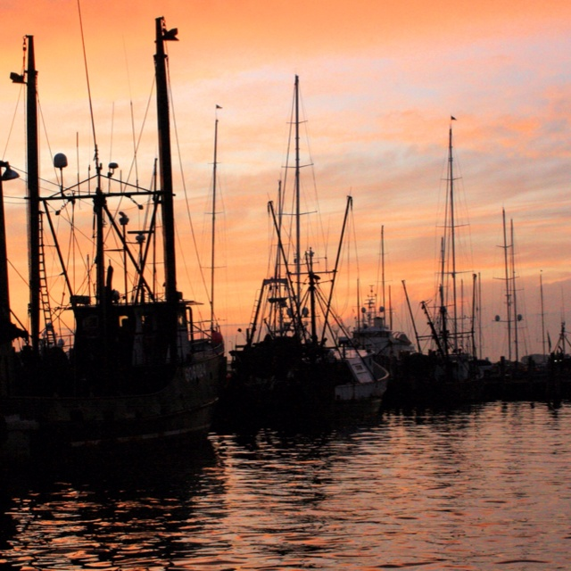 115 best images about newport ri on pinterest the for Fishing newport ri