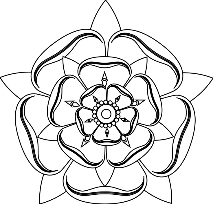 Line Drawing Of Rose Flower : Tudor rose line drawing tattoo pinterest roses