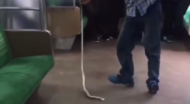 The 2006 action-thriller Snakes on a Plane may have been a thing of hair-raising fiction, and thank goodness for that.  But in Indonesia, some unlucky passengers on a commuter train serving the Bogor-Angke route came face-to-face with some real life slithery drama after a snake ended up on the ride with them.  Snakes on a Plane? No, it's a snake on a train in Indonesia - and now the video's gone viral, Business Insider - Business Insider Singapore