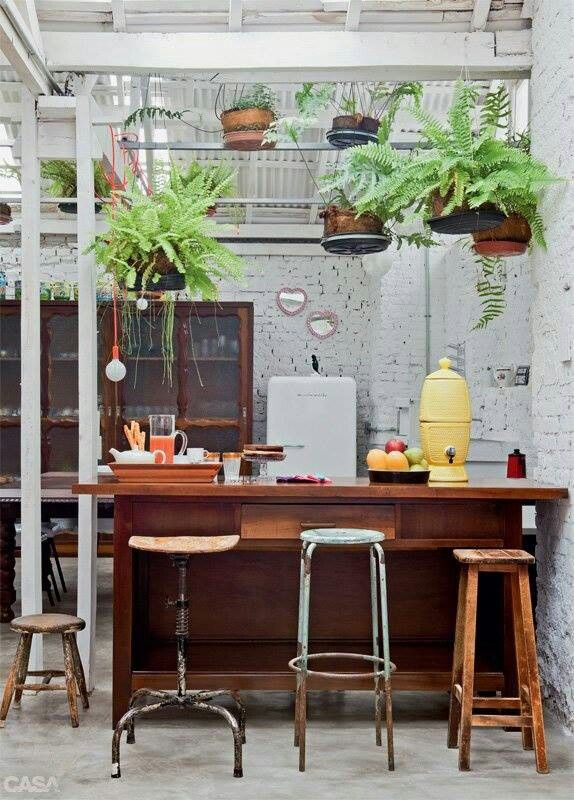 Love the hanging plants above the bar