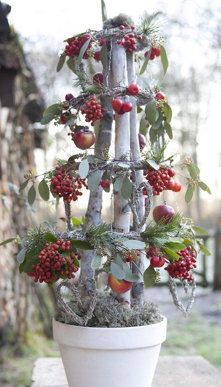 Een Kerstboom Van Berkenstammen Verliest Geen Naalden Maar Is Wel