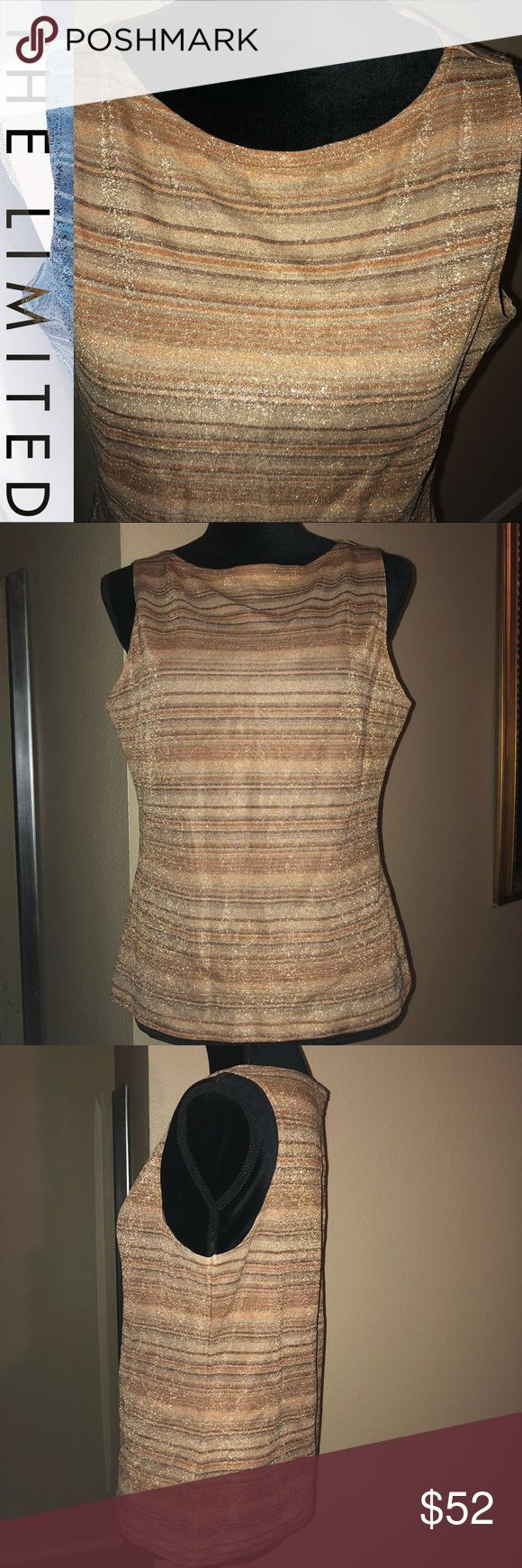 """✨The Limited Metallic Gold/Bronze Stripe Cami/Top Preloved BEAUTIFUL glittery metallic Gold/Bronze/Copper Couture cami/tank by THE LIMITED with soft stripes throughout! Classic crewneck, 87% Nylon, 13% Metallic.   Laying flat: 13.5"""" shoulder to shoulder, 19.5"""" armpit to armpit, 22"""" Top shoulder band to bottom hem. Has some stretch, which adds an additional 2""""- 3"""" of room!  Stunning to complete any ensemble for any occasion! See last pic for gold silk ruched Button Down that is FAB w/it…"""