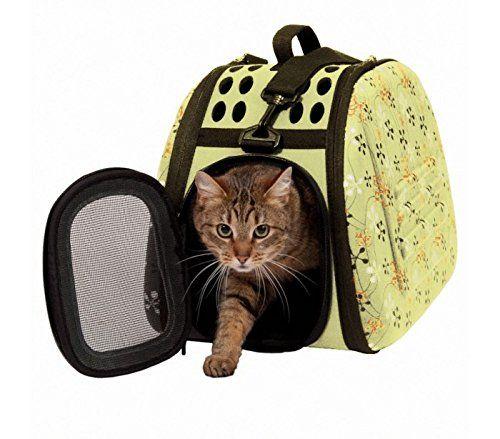 Come scegliere il miglior trasportino per il tuo gatto? La guida definitiva alla scelta del trasportino, consigli, idee e prezzi per scegliere al meglio.