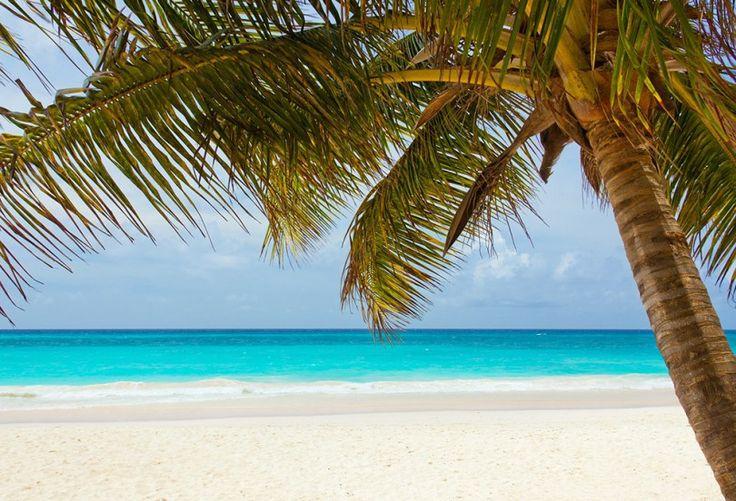 7 lugares increíbles de Quintana Roo y poco turísticos!   #RivieraMaya #QuintanaRoo #Mexico
