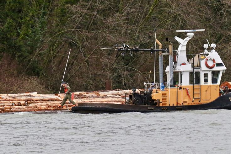 """In between tugboat """"Harken 6"""" and log boom at Poplar Island in the Fraser River. Click image to enlarge."""