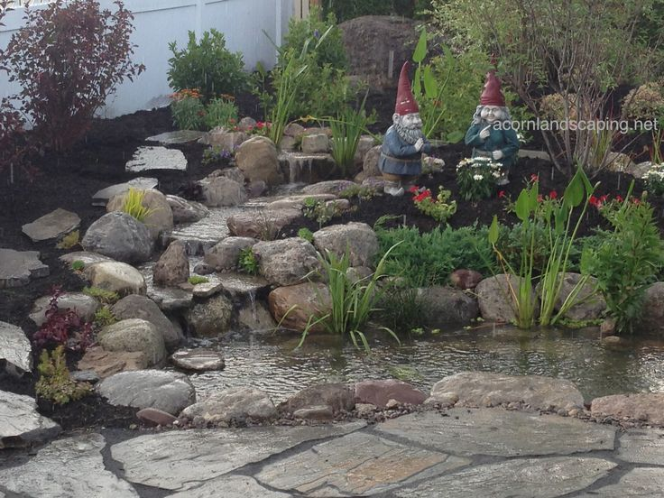 17 best images about ponds rochester ny backyard ponds for Outdoor fish pond care