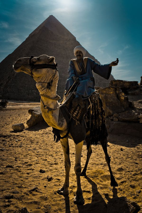 Camel & Rider at Pyramids with Konn the Frog by Miles Montague, via 500px