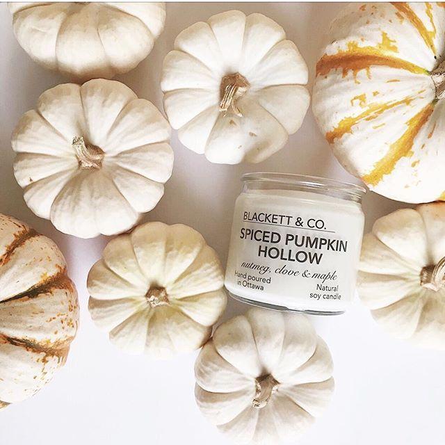 BLACKETT & CO. Spiced Pumpkin Hollow