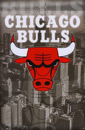 bulls chicago - na na HEY...