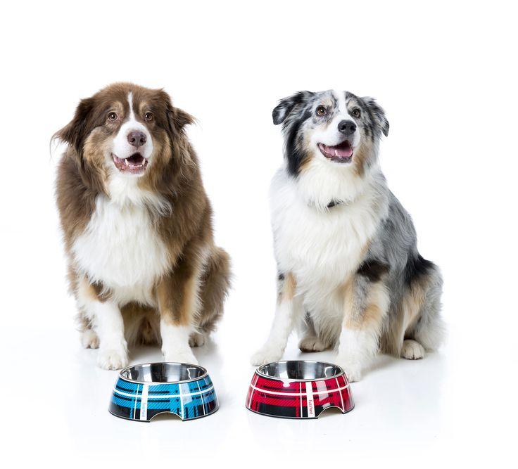 FuzzYard Fling - Easy Feeder Pet Bowl