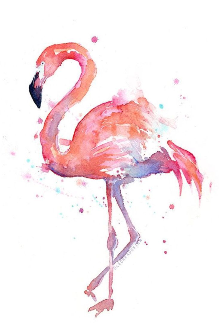 Flamingo water color picture