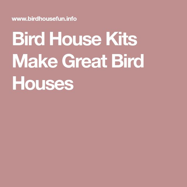 Bird House Kits Make Great Bird Houses #birdhouses