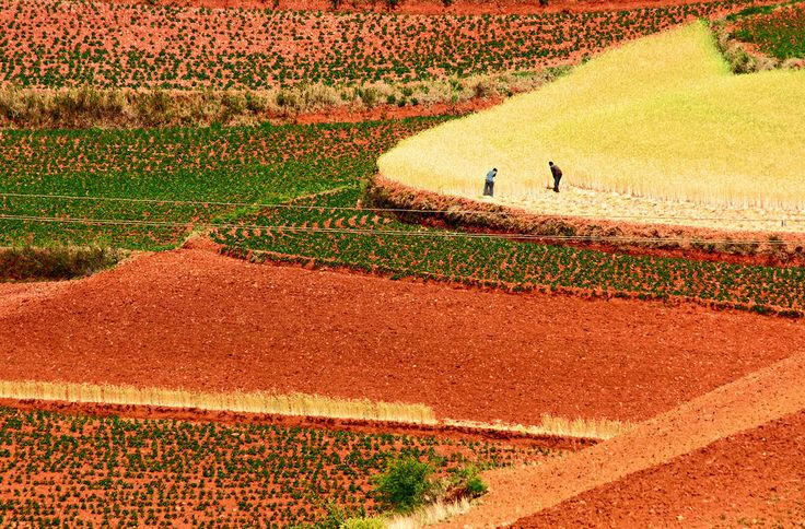 Os terraços de terra vermelha de Dongchuan, na China 05