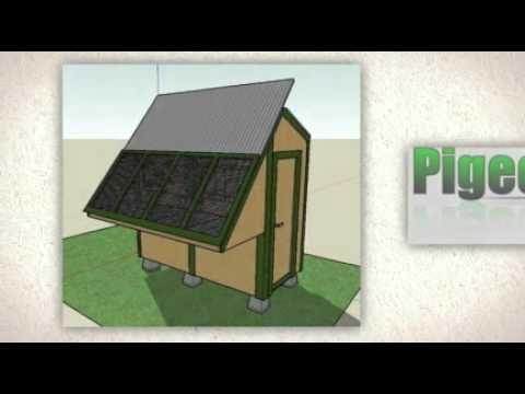 Racing Pigeon Loft - YouTube