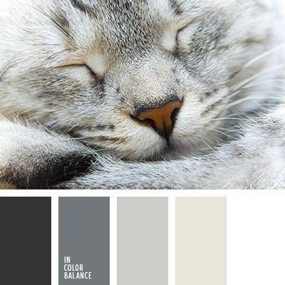 "Warm shades of gray and beige will be relevant when planning repair bedroom. Using these colors, you will create a harmonious interior, which, as will be cozy and ""warm."""