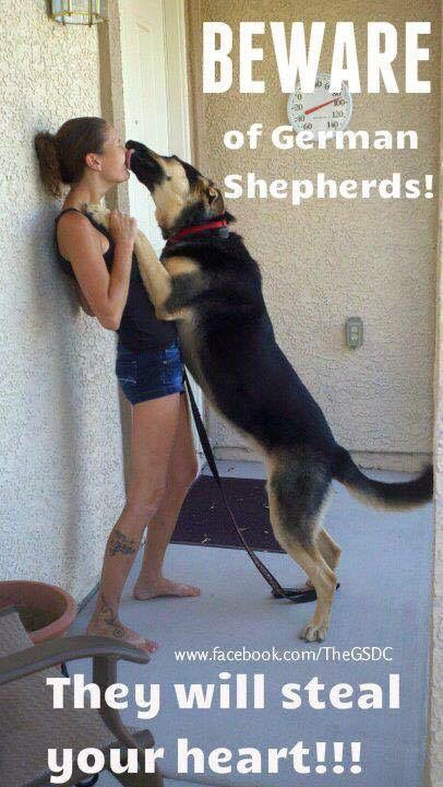 """Click visit site and Check out Cool """"German Shepherd"""" T-shirts. This website is top-notch. Tip: You can search """"your name"""" or """"your favorite shirts"""" at search bar on the top."""