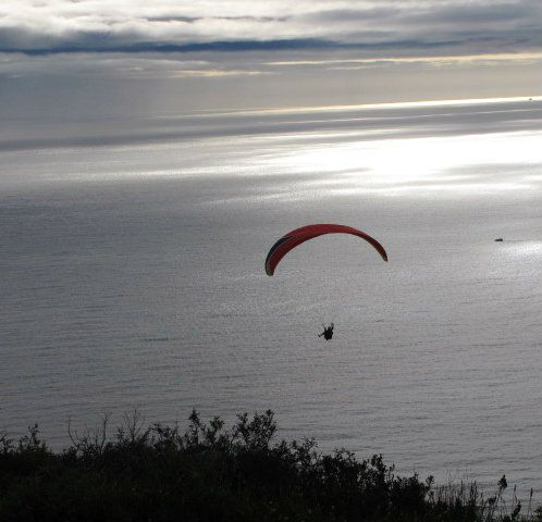 Paragliding off Signal Hill, Cape Town